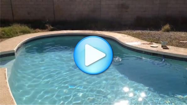 Pool Cleaning Services | Pink Dolphin Pool Care